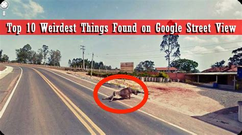 the top 10 most googled things of 2012 designtaxi com top 10 weirdest things found on google street view youtube