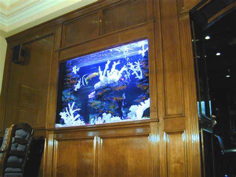 aquarium design delhi marine aquarium
