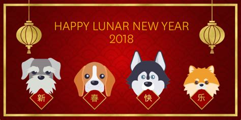 happy lunar new year vs happy new year happy year of the our lunar new year sts