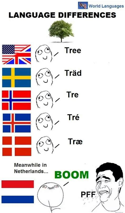 Old Language Meme - 1000 images about dutch on pinterest dutch language