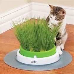 catit 2 0 cat grass planter refill pack