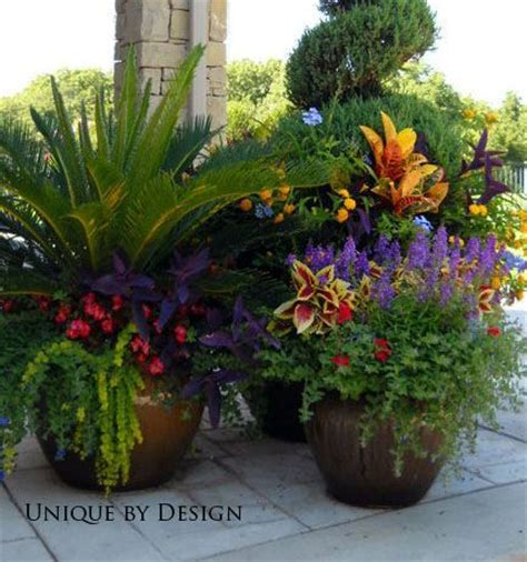 Plant Pot Ideas For The Patio by Best 25 Potted Plants Patio Ideas On