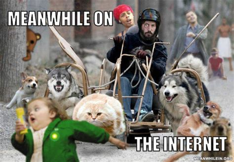 Meanwhile Meme - meanwhile in hilarious memes 48 pics izismile com