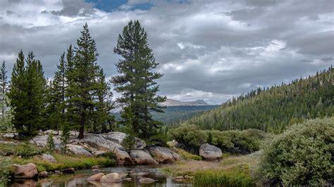 wallpaper  yosemite national park trees clouds mountains california usa