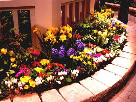 front yard and backyard landscaping ideas designs garden