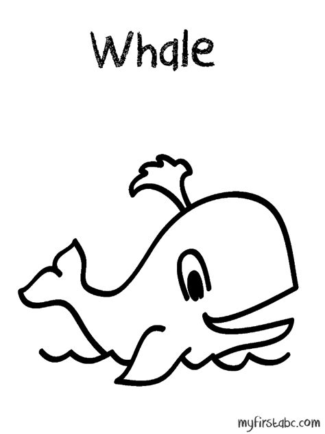 coloring pages whales baby whale coloring pages coloring pages