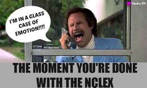 Nclex Meme - nclex nursing school humor ron burgundy meme anchorman