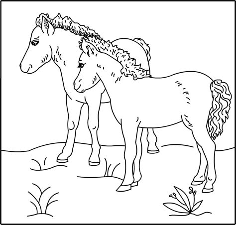 coloring pictures of baby horses free coloring pages of baby horses