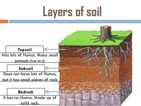 layers of the soil diagram what are some types of soil