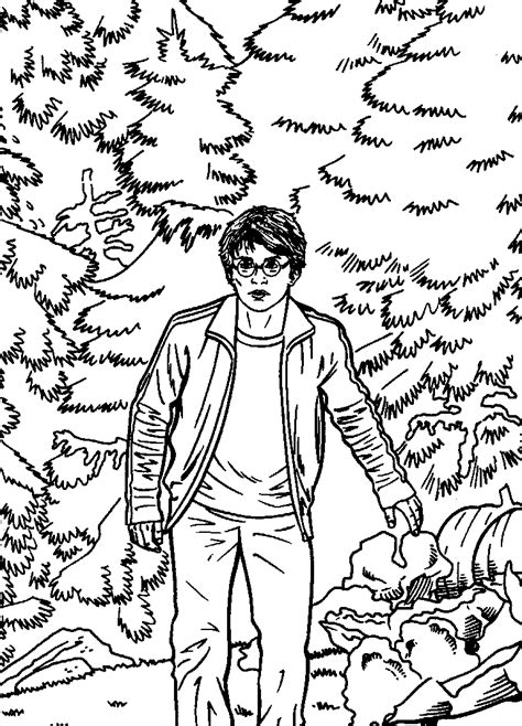 harry potter coloring book out of stock n coloring page harry potter and the