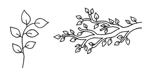 Tree Branch With Leaves Template Sketch Coloring Page Tree Branch Template