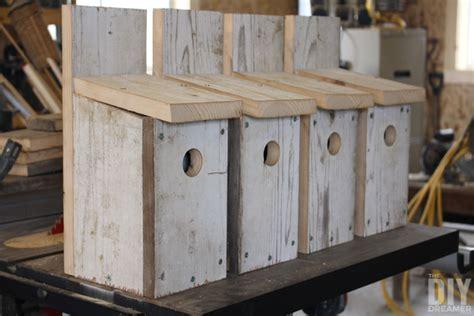 building bird houses building bluebird bird houses how to build a bird house