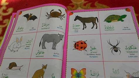 Kamus 3 Bahasa Inggris Indonesia Arab kamus bergambar bahasa arab inggris indonesia 3 bahasa