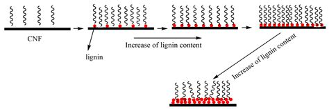 Polymers Free Full Text Influence Of The Lignin