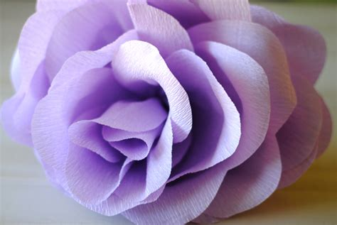 How To Make Paper Roses Martha Stewart - the rewm how to diy oversized paper flowers
