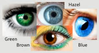 what is the most eye color gb lifesciences