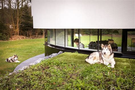 dog friendly houses round house design a dog friendly home by 123dv architecture beast