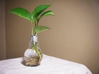 fabriquer un vase avec une oule conseils et astuces