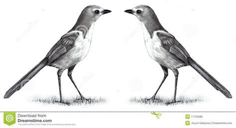 Two Birds Tote de tekening het potlood twee vogels aangezicht