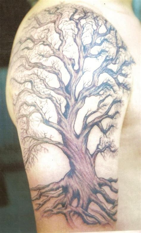 cool tree tattoo designs tree tattoos designs ideas and meaning tattoos for you