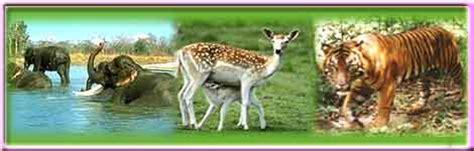biography of mahatma gandhi tnpsc health is wealth indira gandhi wild life sanctuary anaimalai
