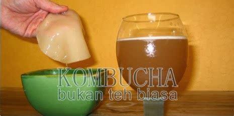 Teh Kombucha kefir minuman kesehatan teh kombucha teh panjang usia