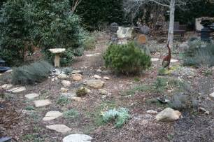 About Rock Garden Rock Garden Journal Entry 2 Gardening With Confidence Plants With Benefits Berry Bad