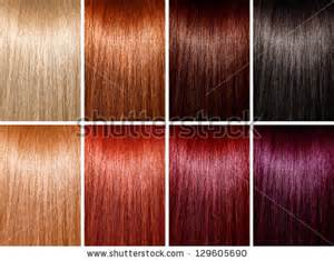 different colors of hair stock images similar to id 126985853 hair colors palette