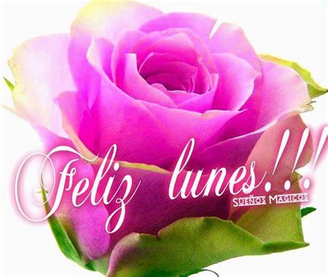 imagenes de rosas feliz dias lunes grandes foro colungateam