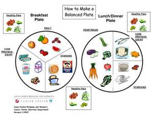 Healthy Plate Template by My Plate Worksheet Worksheet Workbook Site