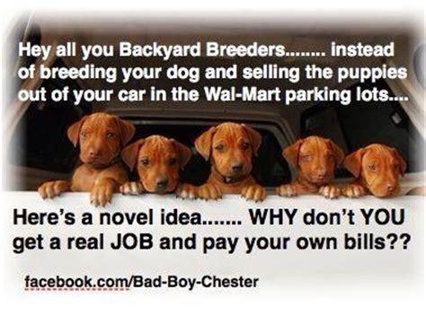 what are backyard breeders backyard breeders dog stuff pinterest
