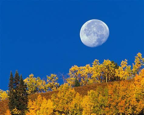 imagenes de paisajes que enamoran fondos de pantalla paisajes de oto 241 o im 225 genes taringa