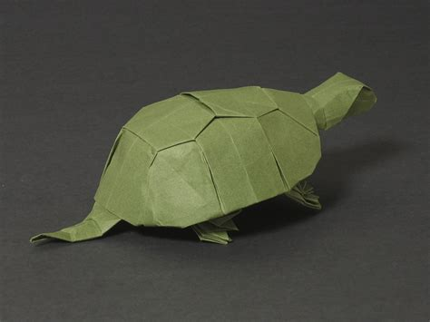 Origami Turtles - origami box turtle comot