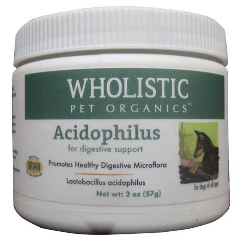 probiotics for dogs wholistic pet organics acidophilus probiotics for dogs cats 2 oz