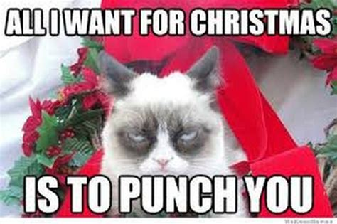 All I Want For Christmas Meme - 20 super funny christmas memes volume 1 sayingimages com