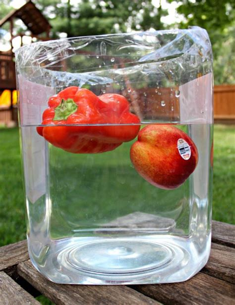 backyard science projects 20 diy science experiments for kids backyard science