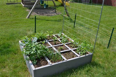 do sugar snap peas need a trellis shorewood illinois square foot garden my square foot garden