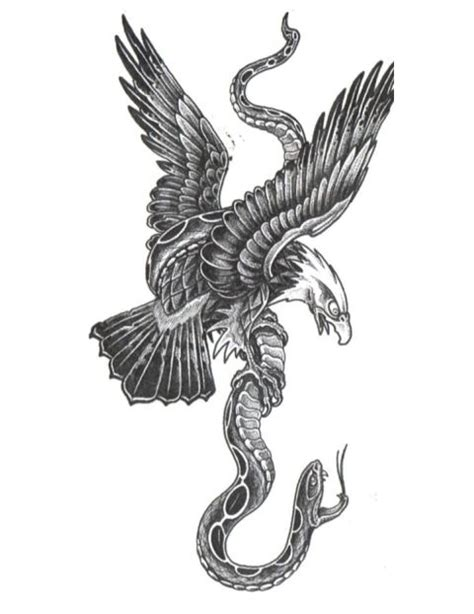 eagle and snake tattoo 145 best agle vs 167 nake vs ca images on