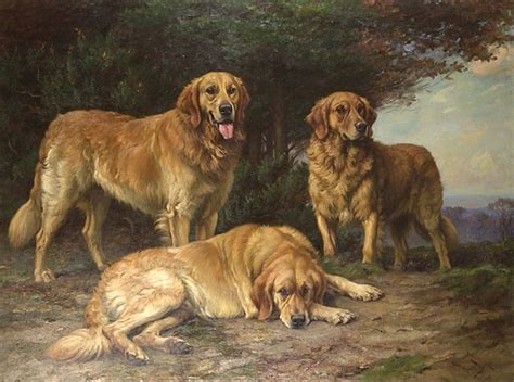 different colored golden retrievers russian tracker history