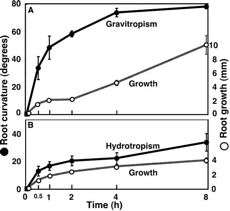 design experiment to demonstrate hydrotropism hydrotropism diagram www pixshark com images galleries