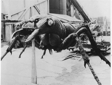 film giant ants another angle on the incredible ant prop from them 1954