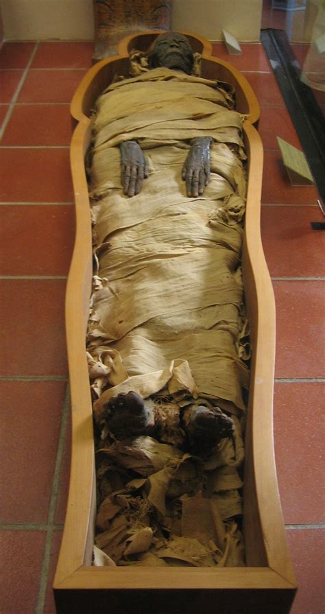 by mummy file mummy in vatican museums jpg wikipedia