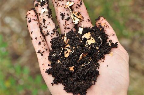 come fare il compost in giardino come realizzare il compostaggio fare giardinaggio