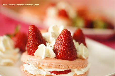 i m just here for dessert macarons mini cakes icecreams waffles more books macaron 224 la fraise et cr 232 me chantilly it s macaron day