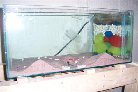 diy sump filter monsterfishkeepers