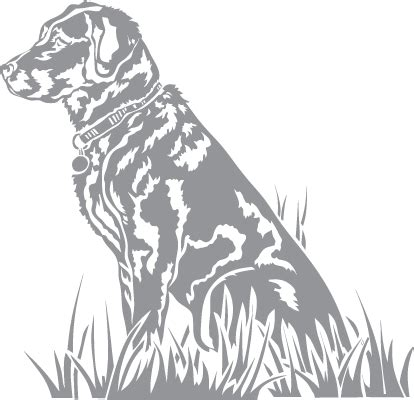 best photos of labrador stencil outline for woodworking