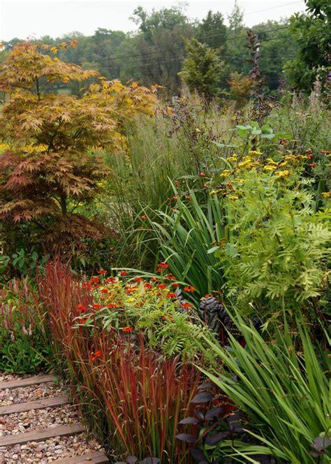 Garten Gras Pflanzen by Japanisches Blutgras Im Garten Pflanzen Ein Feuerroter