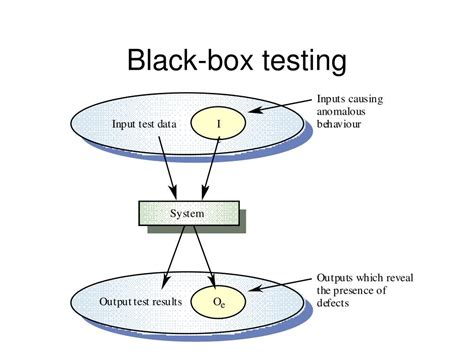 black box testing ppt testing the software with blinders on powerpoint