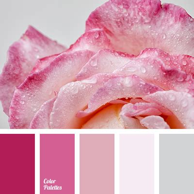 ashen color ashen color color palette ideas