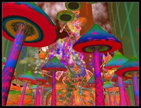 best psychedelic mushrooms 153 best psychedelic mushrooms images on fungi